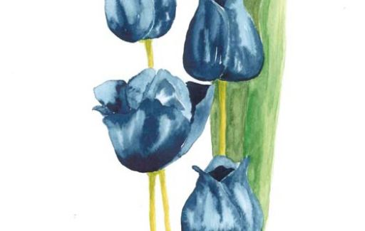 Blue Tulips SOLD  by Lesley Goff