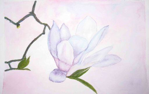 Magnolia flower £75  by Lesley Goff